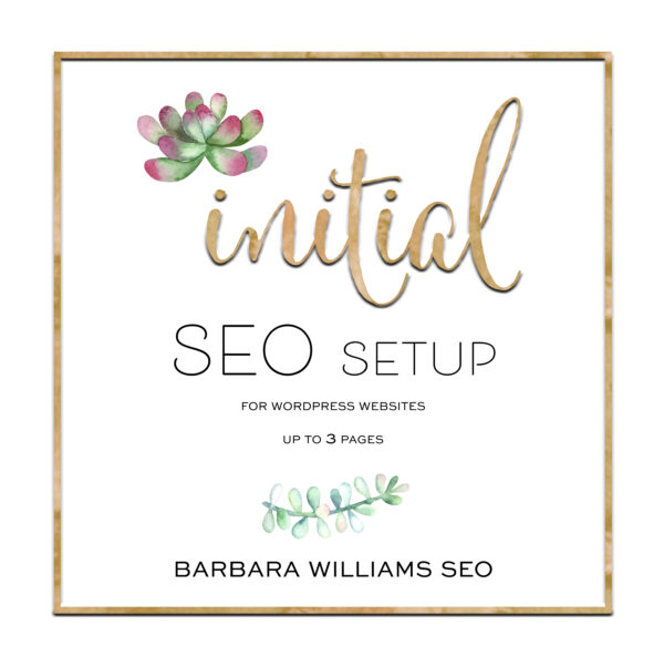 initial seo bronze package 3 pages